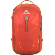 Gregory Mountain Products Anode Men's Daypack, Ferrous Orange, One Size, Ventilation: keeps you cool whether you are running late or taking it easy By Visit the Gregory Store