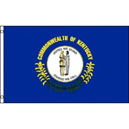 Kentucky Flag KY State Banner Pennant 2x3 foot Indoor Outdoor 24x36 inches (State 2x3 Banner Flag)
