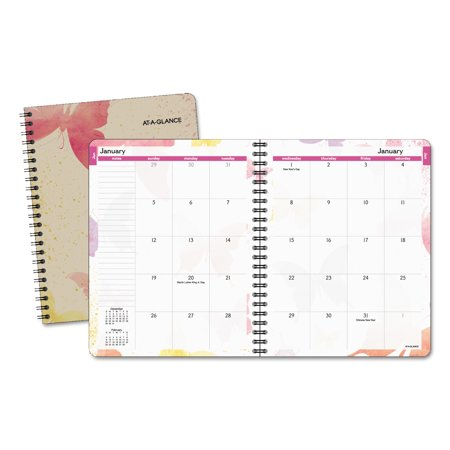 AT-A-GLANCE Watercolors Monthly Planner, 6 7/8 x 8 3/4, Watercolors, 2018-2019 Ata Glance Monthly Planners