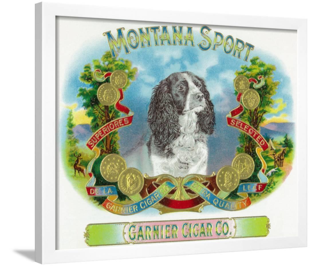 Cigar Box Wall Art: Montana Sport Brand Cigar Box Label Framed Print Wall Art