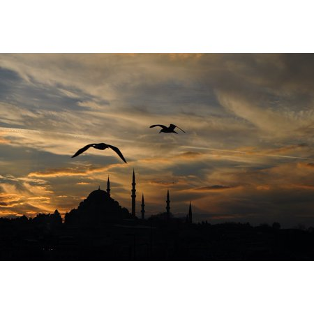 - LAMINATED POSTER Clouds Sunset Istanbul Turkey Landscape Animal Poster Print 24 x 36