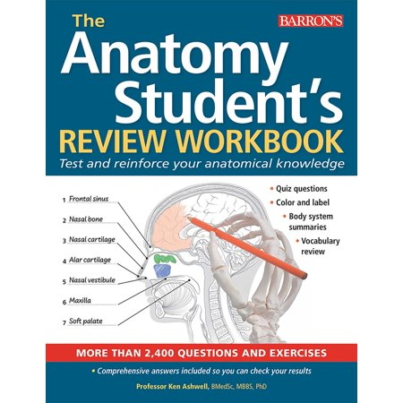Anatomy Student's Review Workbook : Test and reinforce your anatomical