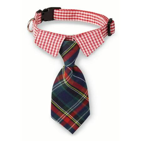 Mud Pie Christmas Small Tie Dog Collar](Mudpie Halloween)