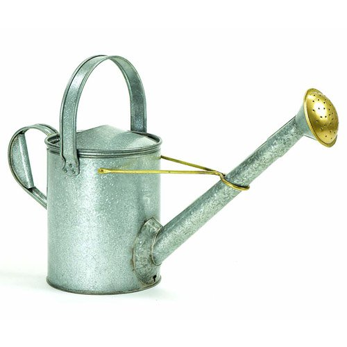 Achla Designs Galvanized Long Neck Watering Can by Minuteman/Achla Designs