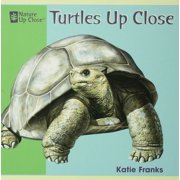 Turtles Up Close - eBook