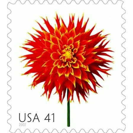 Dahlia 41 Poster Print By  Us Postal Service