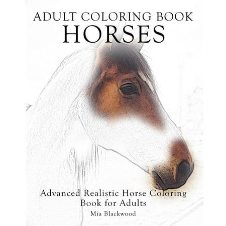 Adult Coloring Book Horses: Advanced Realistic Horses Coloring Book ...