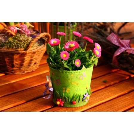 LAMINATED POSTER Nature Spring Plant Flowers Decoration Garden Poster Print 24 x 36](Spring Decorations)