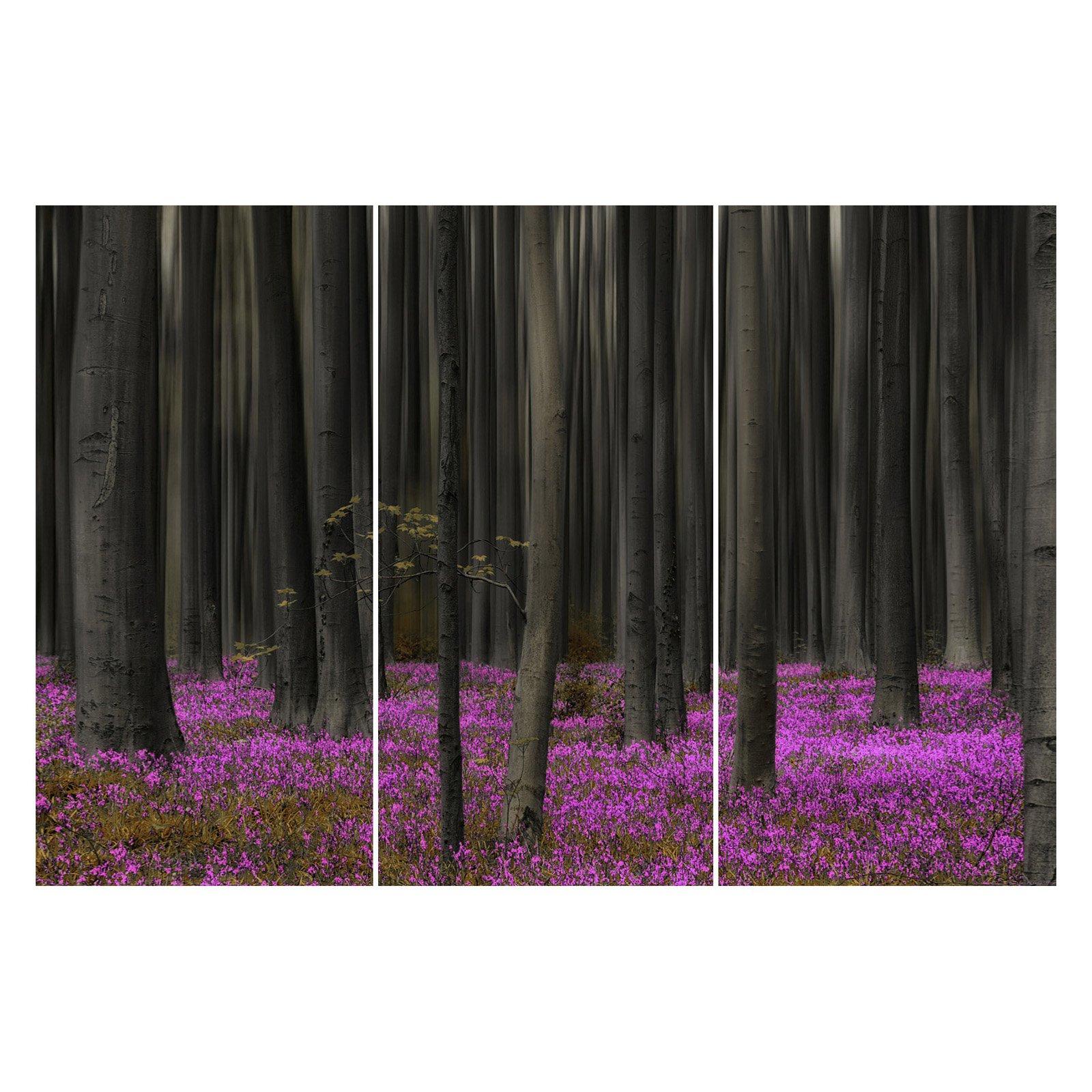 Somerset Fine Art Virgin Forest Triptych Canvas Print - Set of 3