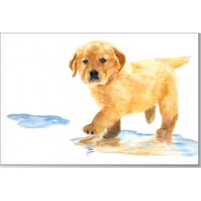 Rainbow Card Company GCU-102PU Puppy Greeting Cards -12 Pack Puddles