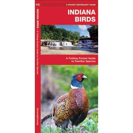 Pocket Naturalist Guides: Indiana Birds: An Introduction to Familiar Species (Il 2 Sturmovik Birds Of Prey Walkthrough)