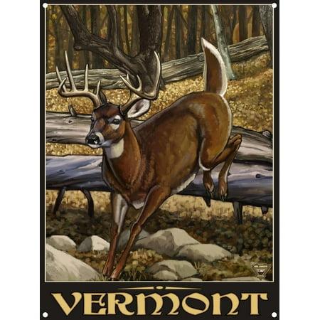 Vermont Whitetail Deer No Hunter Metal Art Print by Paul A. Lanquist (9