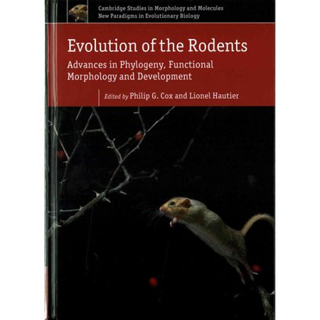 Evolution Of The Rodents  Advances In Phylogeny  Functional Morphology And Development