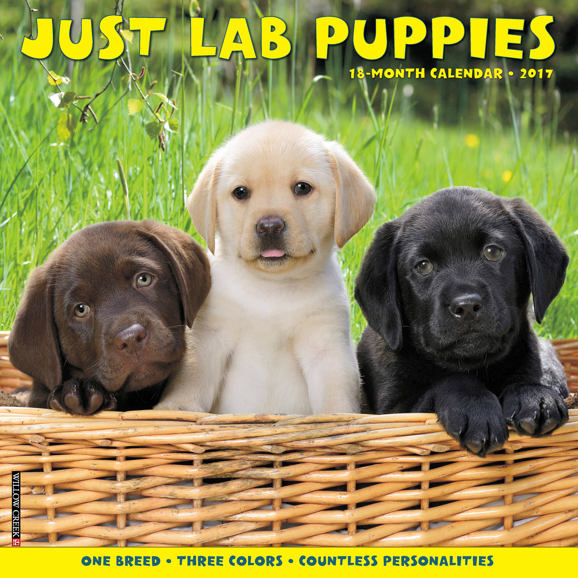 2017 Just Lab Puppies Wall Calendar