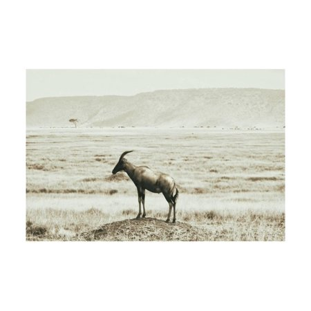 African Plains IV Print Wall Art By Golie Miamee