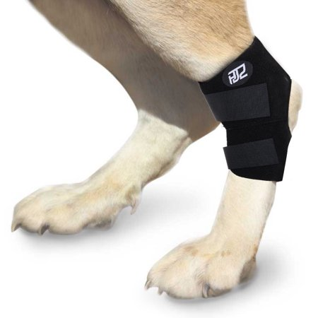 HJZ Dog Canine Rear Leg Hock Joint Protection Brace Paw Compression Wrap With Straps
