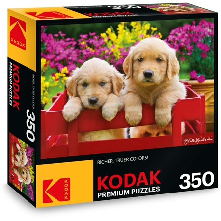 Golden Retriever Puppy Jigsaw Puzzle (Kodak 350 Piece Premium Jigsaw Puzzle of Adorable Puppies )