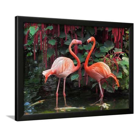 Anime Couples Black And White (Flamingo Couple Framed Print Wall Art By)