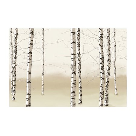 4 walls modern murals birch trees wall mural for Birch trees mural