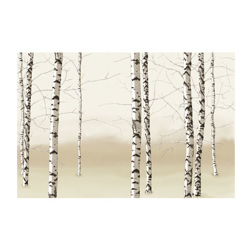 4 Walls Modern Murals Birch Trees Wall Mural Part 86