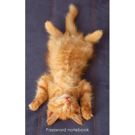 Password Notebook  Small Internet Address And Password Logbook   Journal   Diary   Ginger Kitten Chilling Out Cover
