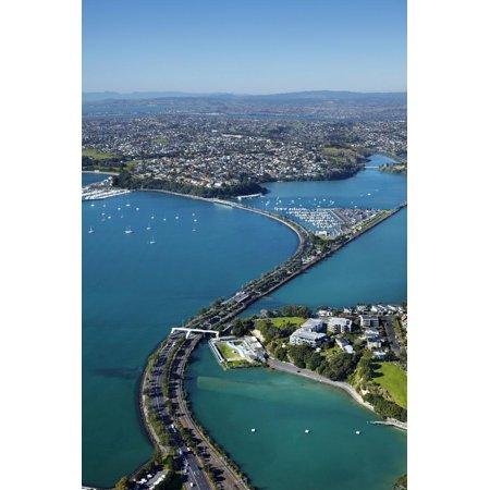 Judges Bay, Tamaki Drive and Waitemata Harbour, Auckland, North Island, New Zealand Print Wall Art By David