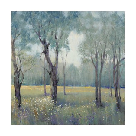 Art Tin - Morning Mist Print Wall Art By Tim OToole