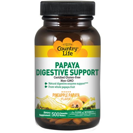 Payasa Halloween (PAPAYA DIGESTIVE SUPPORT 500)