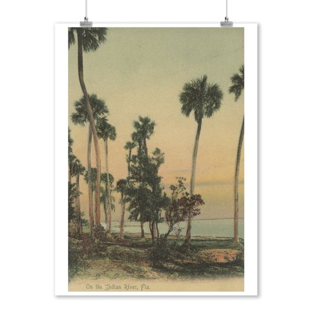 Shoreline view of Indian River with Palm Trees, Florida - Vintage Halftone (9x12 Art Print, Wall Decor Travel Poster) (Indian River Groves)