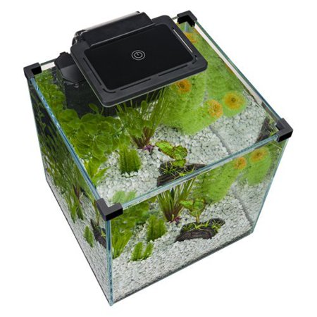 Penn plax simplicity aquarium led light for Fish tank lights walmart