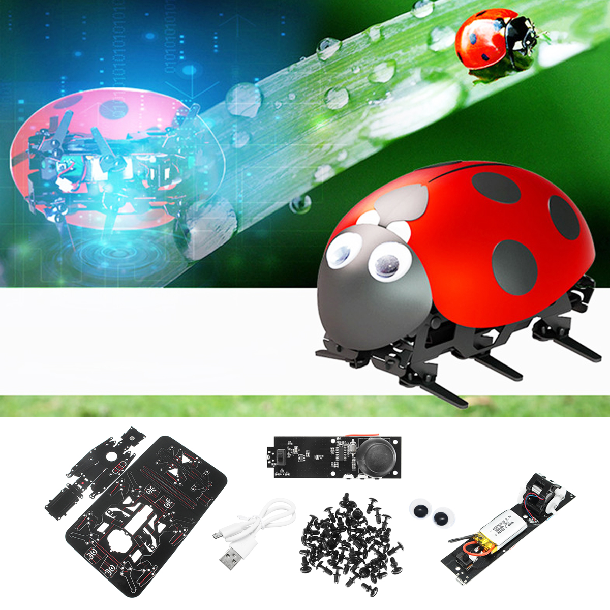 2.4G Toptrend Intelligent RC Ladybug Robot Beetle DIY Toy Gift w/ Remote Control