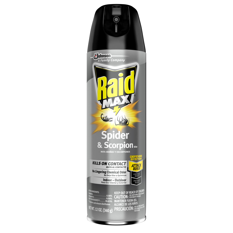 Raid Max Spider & Scorpion Killer, 12 Ounces