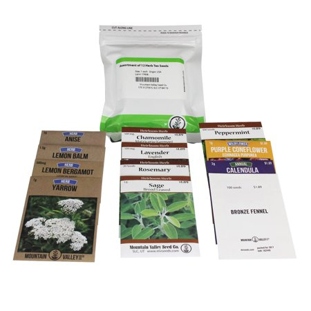 Herbal Tea Herb Seed Assortment - 12 Packs - Non-GMO Herbal Tea Seeds - Fever Few, Chamomile, Anise, Rosemary, Angelica, Peppermint, More