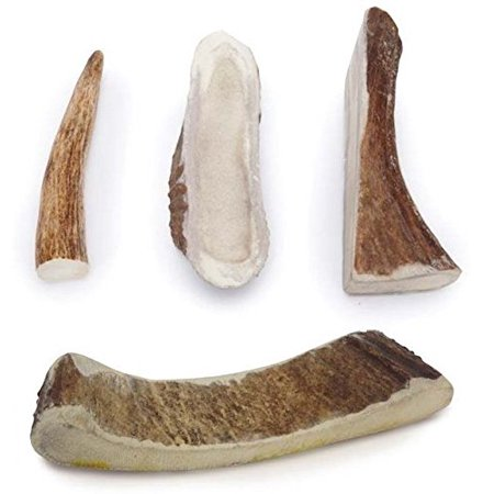 Natural Dental Chews - MOOSE ANTLER DOG DENTAL CHEWS Natural Way to Clean Your Dog's Teeth Bulk Too(Medium - 6