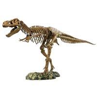 Elenco T-Rex Skeleton