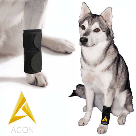 Agon® Dog Canine Front Leg Brace Paw Compression Wraps With Protects Wounds Brace Heals and Prevents Injuries and Sprains Helps with Loss of Stability caused by Arthritis (Small/Medium)