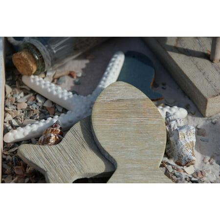 - LAMINATED POSTER Starfish Fish Sea Deco Beach Coast Mussels Poster Print 24 x 36