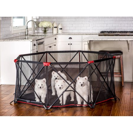Carlson Folding Portable Pet Play Yard, 8-Panel, Includes ...
