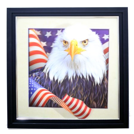 Black American League Frame - AMERICAN EAGLE WITH FLAG 3D LENTICULAR ART PICTURE FRAME ZOOMING 3D EFFECT WALL DECOR