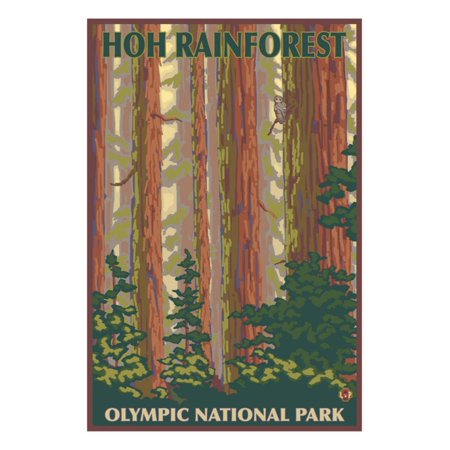Hoh Rainforest - Olympic National Park Print Wall Art By Lantern - Olympic Baseball Wall Art