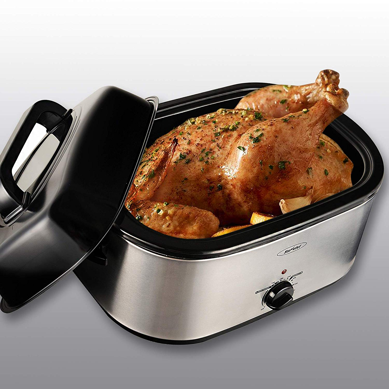 Roaster Oven with Red Light, 20 Quart, Stainless Steel, Silver