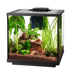 Aqueon 7.5 Gallon LED Shrimp Aquarium - Marine Aquarium Shrimp