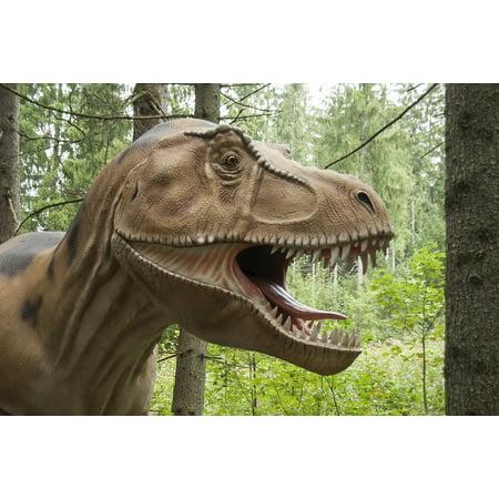 Framed Art for Your Wall Dangerous Dino Prehistoric Times Animal Dinosaur 10x13 - Dinosaur Frame