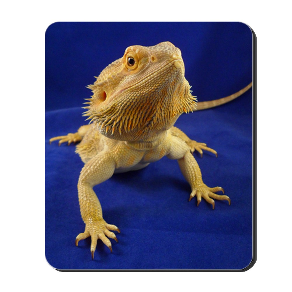 CafePress - Bearded Dragon - Non-slip Rubber Mousepad, Gaming Mouse Pad