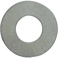 Hillman 5/16 In. Stainless Steel Flat Washer (100 Ct.) 830504