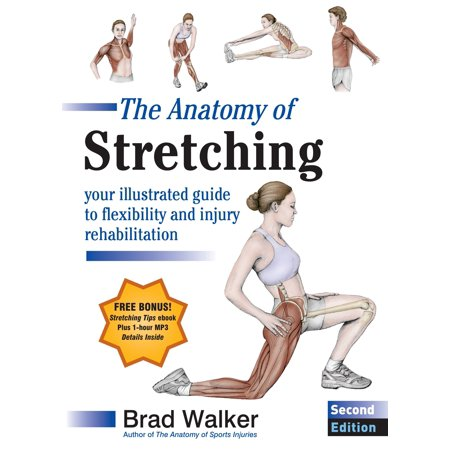 The Anatomy of Stretching, Second Edition : Your Illustrated Guide to Flexibility and Injury