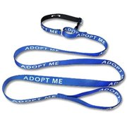 Strapworks MLC-P1-6FT-S 1 W inch Premier Line Martingale and Leash Combo - 6 ft. , Small