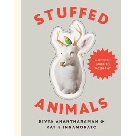 Stuffed Animals  A Modern Guide To Taxidermy
