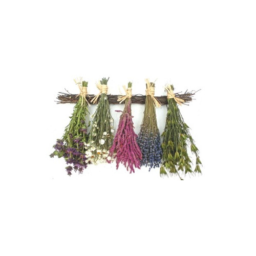 Dried Flowers and Wreaths LLC Spring Floral Hanger