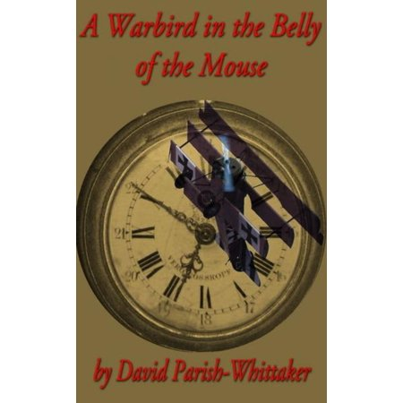 A Warbird in the Belly of the Mouse - eBook